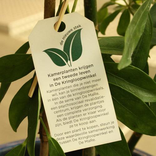 Plant02